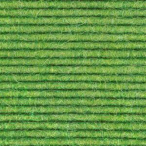 Lettuce Leaf 580